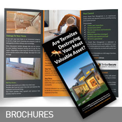 brochures designed and printed at non stop adz